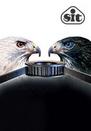 Koła i pasy - WHITEHAWK Pd (8M, 14M)